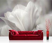 Vlies Fototapete 400x280 cm PREMIUM PLUS Wand Foto Tapete Wand Bild Vliestapete - WHITE TULIPS - Blumen Tulpen Natur Schwarz Weiss Blumenranke Blumendeko - no. 098