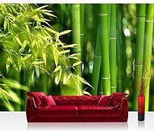 Vlies Fototapete 400x280 cm PREMIUM PLUS Wand Foto Tapete Wand Bild Vliestapete - ASIA BAMBOO - Bambus Bambuswald Dschungel Asia Asien Grün Bambusweg - no. 018