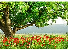 Vlies Fototapete 400x280 cm PREMIUM PLUS Wand Foto