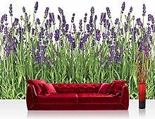 Vlies Fototapete 400x280 cm PREMIUM PLUS Wand Foto Tapete Wand Bild Vliestapete - Natur Tapete Lavendel Pflanze Wiese Blüten grün - no. 612