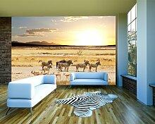 Vlies Fototapete - afrikanische Savanne - 230x150 cm - inklusive Kleister - Tapetenkleister – Bild auf Tapete – Bildtapete – Foto auf Tapeten – Wand – Wandtapete – Vliestapete – Wanddeko - Design