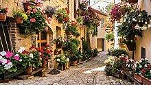 VLIES Fototapete-ALTSTADT ITALIEN-368x254cm-8