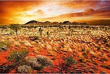 Vlies Fototapete AUSTRALISCHE LANDSCHAFT 330 x 220 cm   Wandbilder XXL - Riesen Wandbild - Wand Dekoration - Vliestapete - Wandtapete   PREMIUM VLIES QUALITÄT