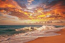 VLIES Fototapete BEACH