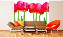 Vlies Fototapete BETT VON TULPEN 220 x 220 cm   Wandbilder XXL - Riesen Wandbild - Wand Dekoration - Vliestapete - Wandtapete   PREMIUM VLIES QUALITÄT
