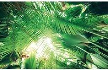 Vlies Fototapete Dschungeldach