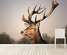 Vlies Fototapete Fotomural Elch 3D Wandbilder
