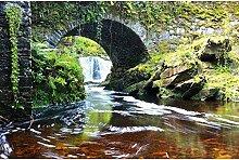 Vlies Fototapete IRELAND 330 x 220 cm   Wandbilder XXL - Riesen Wandbild - Wand Dekoration - Vliestapete - Wandtapete   PREMIUM VLIES QUALITÄT