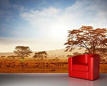 Vlies Fototapete - Kenia - 300x230 cm - Inklusive