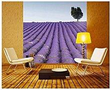 Vlies Fototapete LAVENDELFELD 220 x 220 cm   Wandbilder XXL - Riesen Wandbild - Wand Dekoration - Vliestapete - Wandtapete   PREMIUM VLIES QUALITÄT