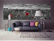Vlies Fototapete MOHNBLUMEN SCHWARZ-WEIß 330 x 110 cm   Wandbilder XXL - Riesen Wandbild - Wand Dekoration - Vliestapete - Wandtapete   PREMIUM VLIES QUALITÄT