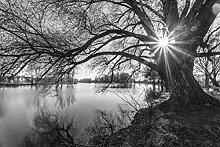 VLIES Fototapete-SEE-400x260 cm-8
