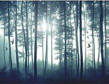 Vlies Fototapete Wald - 352 x 250 cm - Tapete