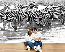 Vlies Fototapete - Zebras an einer Wasserstelle - 270x180 cm - inklusive Kleister - Tapetenkleister – Bild auf Tapete – Bildtapete – Foto auf Tapeten – Wand – Wandtapete – Vliestapete – Wanddeko - Design