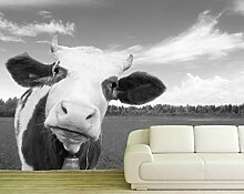 Vlies Tapete Poster Fototapete Kuh Rind braun