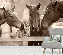 Vlies Tapete XXL Poster Fototapete Pferde Katzen