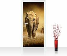 Vlies Türtapete 100x211 cm PREMIUM PLUS Tür Fototapete Türposter Türpanel Foto Tapete Bild - AFRICAN SAVANNA - Afrika Savanne Elefant Elefanten Gras Landschaft - no. 011