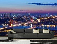 Vliestapete Istanbul bei Nacht VT374