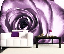 Vliestapete violette Rose VT51 Größe:400x280cm,