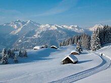 Vliestapete Winterwanderung VT455