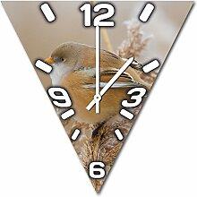 Vögelchen, Design Wanduhr aus Alu Dibond zum Aufhängen, 48 cm Durchmesser, schmale Zeiger, schöne und moderne Wand Dekoration, mit qualitativem Quartz Uhrwerk