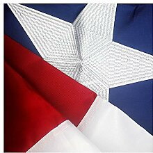 VSVO Flagge Amerikas 3'x5' Texas Fahne mit