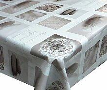 Wachstuch Steine Pusteblume Breite 80 - 140 cm Länge wählbar abwaschbare Tischdecke 110 x 230 cm