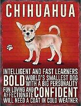 WAHAH Chihuahua Dog Blechschild Metall Neuheit