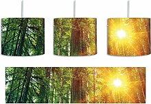 Wald bei Sonnenlicht inkl. Lampenfassung E27,