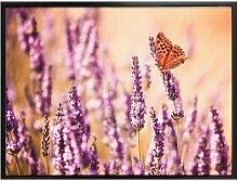 Wall-Art Poster Schmetterling Lavendel,