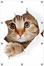 Wallario Garten-Poster Outdoor-Poster, Katze mit