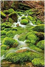 Wallario Garten-Poster Outdoor-Poster, Moosiger