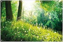 Wallario Garten-Poster Outdoor-Poster, Pusteblumen