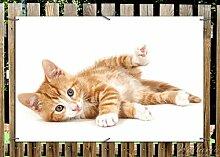 Wallario Garten-Poster Outdoor-Poster - Süße Katze mit großen Augen - rot weiß getigert in Premiumqualität, Größe: 61 x 91,5 cm, für den Außeneinsatz geeigne