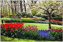 Wallario Glasbild Bunte Blumen und Kirsch-Baum im