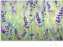 Wallario Herdabdeckplatte / Spritzschutz aus Glas, 1-teilig, 80x52cm, für Ceran- und Induktionsherde, Motiv Lila Blumenfreude - Violette Pflanzen auf der Wiese