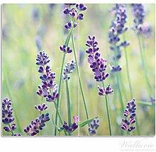 Wallario Herdabdeckplatte / Spritzschutz aus Glas, 2-teilig, 60x52cm, für Ceran- und Induktionsherde, Lila Blumenfreude - Violette Pflanzen auf der Wiese