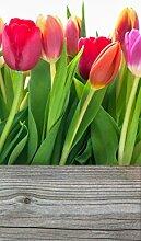 Wallario Selbstklebende Türtapete Rote, weiße und pinke Tulpen im Frühling - 93 x 205 cm in Premium-Qualität: Abwischbar, brillante Farben, rückstandsfrei zu entfernen