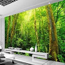 Wallpaper Fototapete Wald Vliestapete 3D Tapete