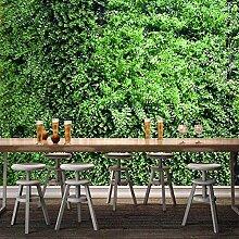 Wallpaper Wandbild Tapete 3D Grünes Blatt Pflanze