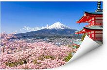 Wallprints - Wallprint Mount Fuji