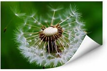 Wallprints - Wallprint Pusteblume im Wind