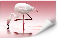 Wallprints - Wallprint Reindl - Pink Flamingo