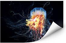 Wallprints - Wallprint Semenov - Amazing Jellyfish