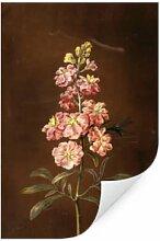 Wallprints - Wallprint W - Dietzsch - Eine rosa Garten Levkkoje