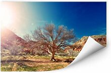 Wallprints - Wallprint Wüstenbaum