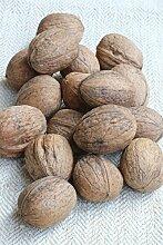 Walnuss Busch-Baum Geisenheim Nr. 26 aromatisch-nussig 100-150 cm braun-grünes Schalenobst Gartenpflanze 1 Pflanze