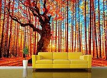 Wandbild Hintergrundbild Wandaufkleber Tapeten 3D