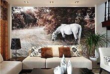 Wandbild Hintergrundbild Wandaufkleber Weißes