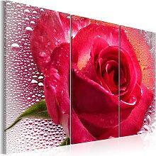 Wandbild - Lady Rose - triptych